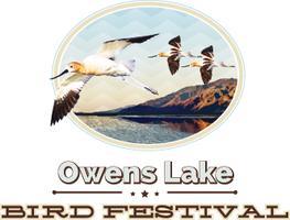 Owens Lake Bird Festival