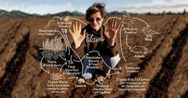 Living Soils Workshop (3 Days), with Dr. Elaine Ingham...