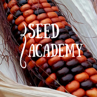 Seed Academy 2015