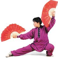 Flying Rainbow Fan & Therapeutic Qigong Workshop