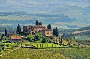 Italian Wine Basics: Esplorare Deliziosi Vini!