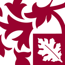Brockenhurst College logo