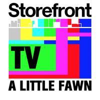 SFTV: A Little Fawn