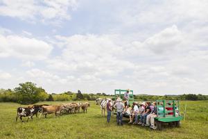 Farm Day at Sand Creek Farm & Dairy
