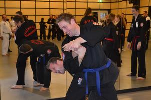 Hapkido (zelfverdediging)