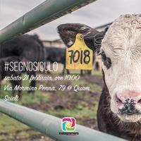 Instameet #SegnoSiculo - Linguaggi e segni...