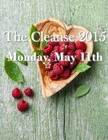 The Cleanse 2015