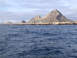 Mother's Day Sail : Farallon Islands