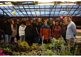 Local Flavor Lab: We Grow Greens