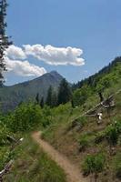 Adventures of Integration - Icicle Ridge -...