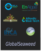 European Seaweed Production and Marketability
