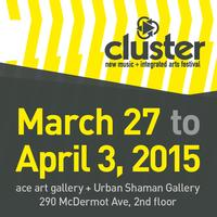 2015 Cluster Festival Festival Pass