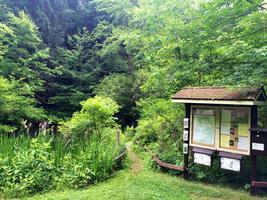 Nature's Clock. Fern Glen Phenology Trail