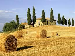 Cook with Massimo: Tuscany - SOLD OUT