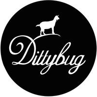 Dittybug Music Presents...
