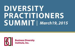 DIVERSITY PRACTITIONERS SUMMIT