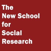 The New School for Social Research Admitted Graduate St...