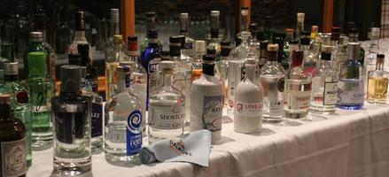 Perthshire's First Gin Festival! On World Gin Day