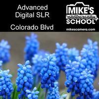 Advanced Digital SLR- Denver