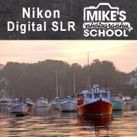 Nikon Digital SLR- Mill Valley