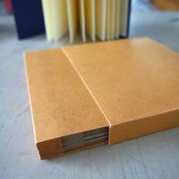 Bookbinding: Concertinas