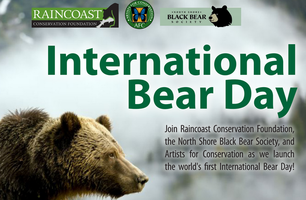 International Bear Day