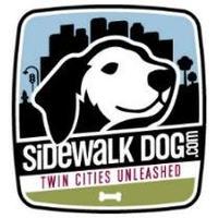 Sidewalk Dog Off-Leash Indoor Barn Romp!