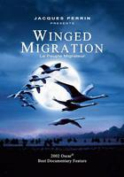 Film Screening: Winged Migration