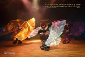 THE 2015 FAERIE SHOW