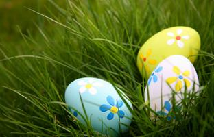 Family Weekend: Easter Eggstravaganza