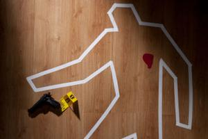 A UCL Museums Murder mystery