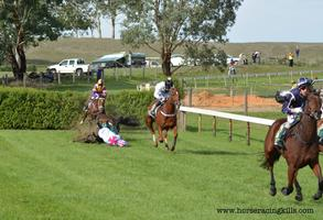 Oakbank Carnival: Jumps racing protest - Easter...