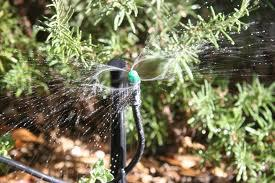 Taking The Mystery Out of Micro-Irrigation