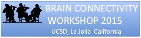 14th International Workshop on Brain Connectivity