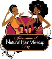 International Natural Hair MeetUp Day -DMV