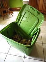 Worm Composting Workshop