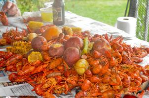 5th Annual Crawfish Boil and Fish Fry 2015