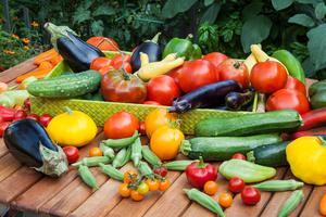 Summerize Your Vegetable Garden