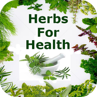 Herbs for Your Health