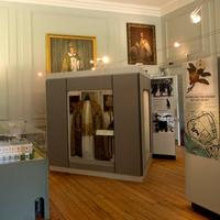 Exploring the Museum Collections