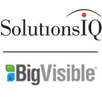 BigVisible Solutions logo