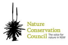 The Nature Conservation Council of NSW logo