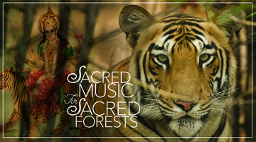 Sacred Music for Sacred Forests and Saving Wild...