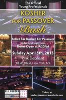 THE OFFICIAL KOSHER FOR PASSOVER BALL FOR YOUNG PROFESS...