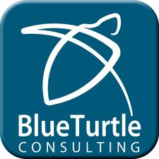Blue Turtle Consulting logo
