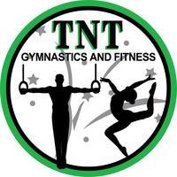 TNT Gymnastics Summer Camp 2015: Day Sessions