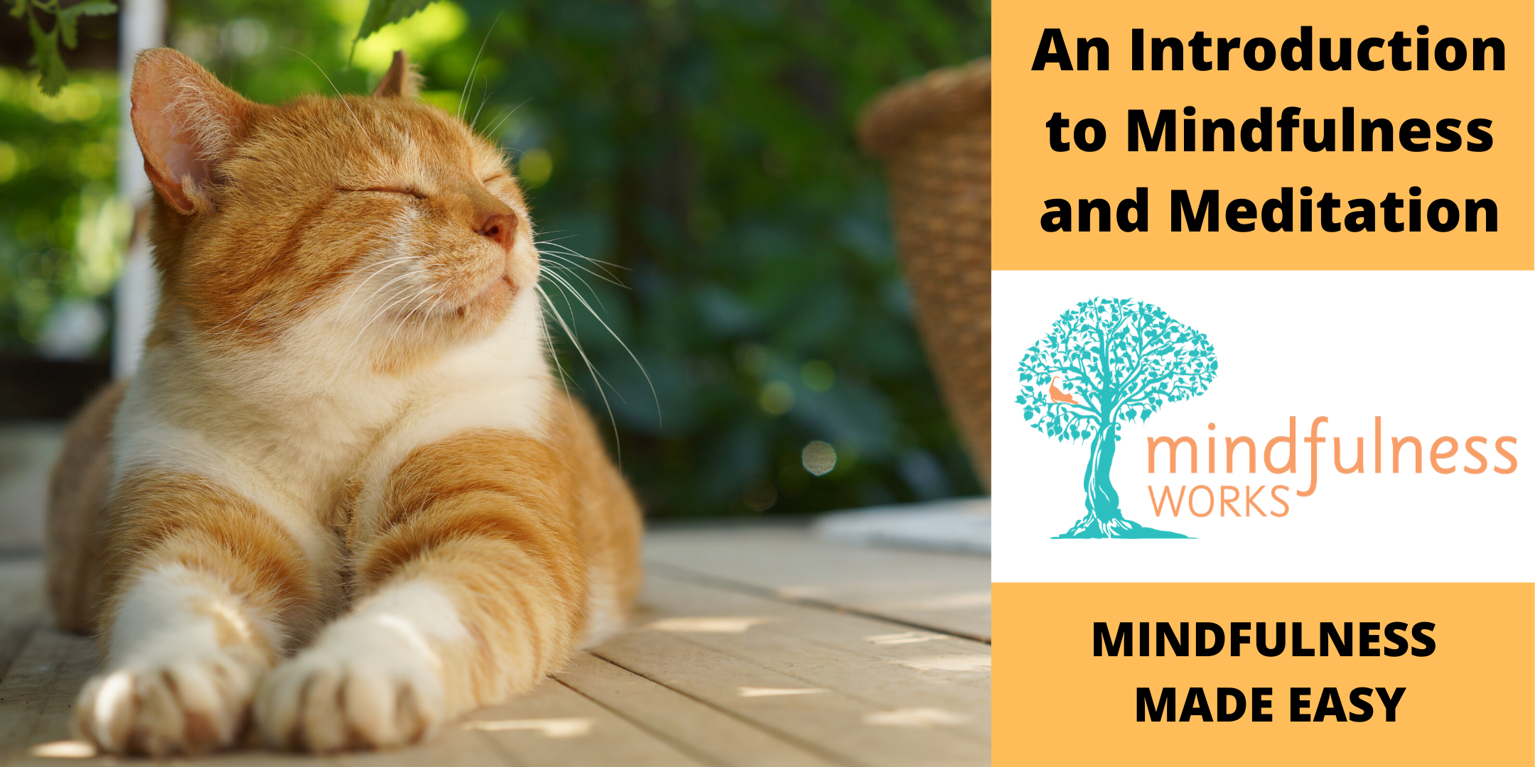An Introduction to Mindfulness and Meditation 4-week Course — Geelong