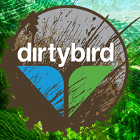 DirtyBird Mud Run 2015