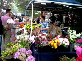 Marrickville Market (Sundays) 8:30am - 3:00pm FREE...