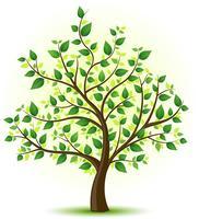 San Joaquin Genealogical Society presents Gena...